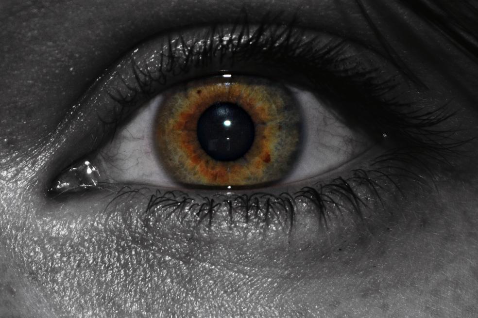 Amber Iris